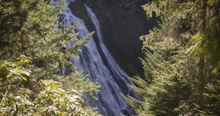 Fall Hike at Salt Creek Falls