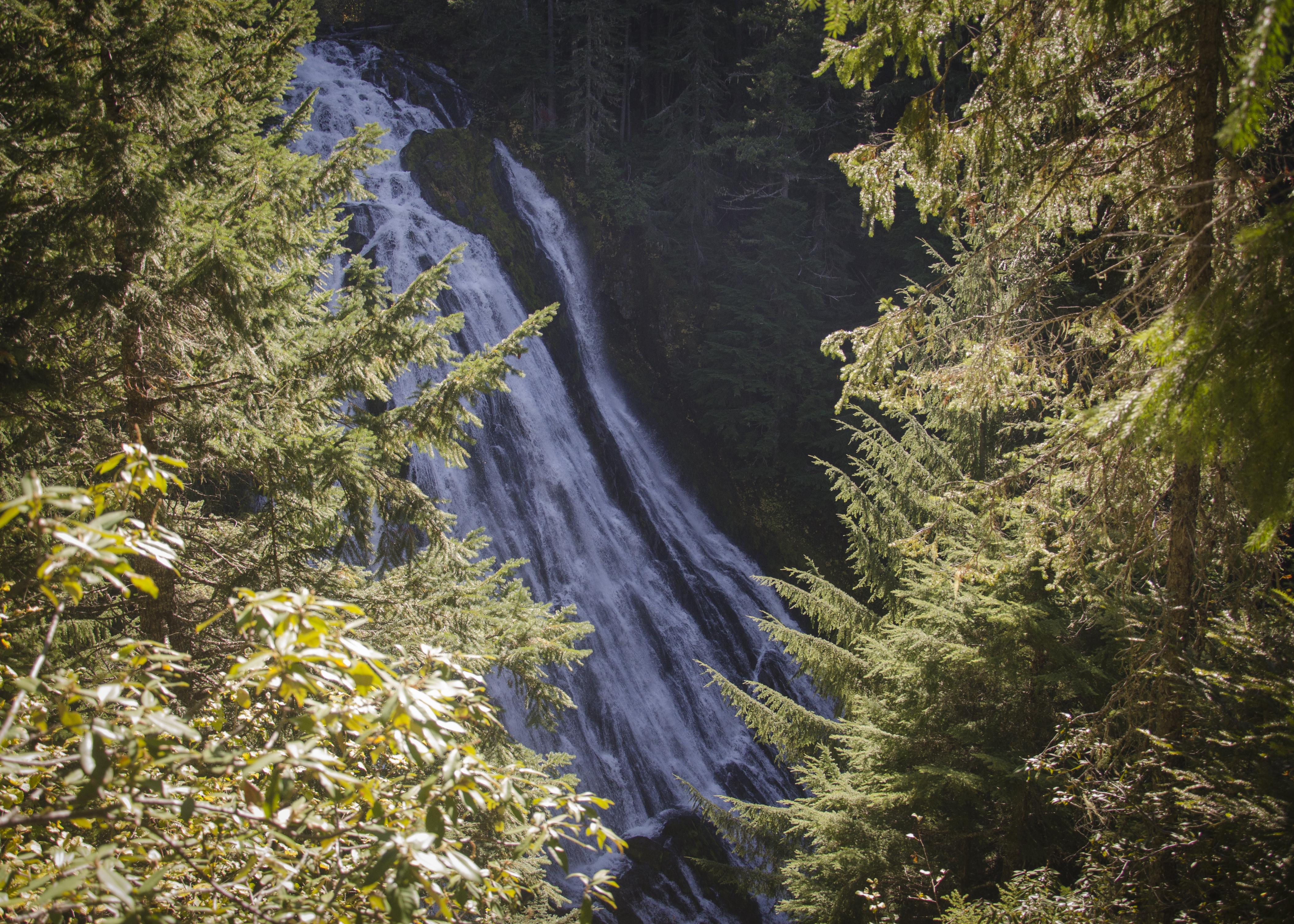 Fall Hike at Salt Creek Falls